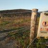 【探訪】高上の掩体壕跡(筑前町立戦跡保存公園予定地)見学しました。